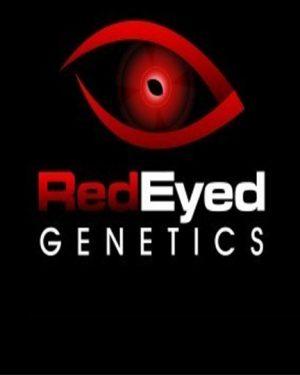 Red Eyed Genetics